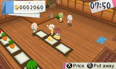 Hometown Story 3DS ROM