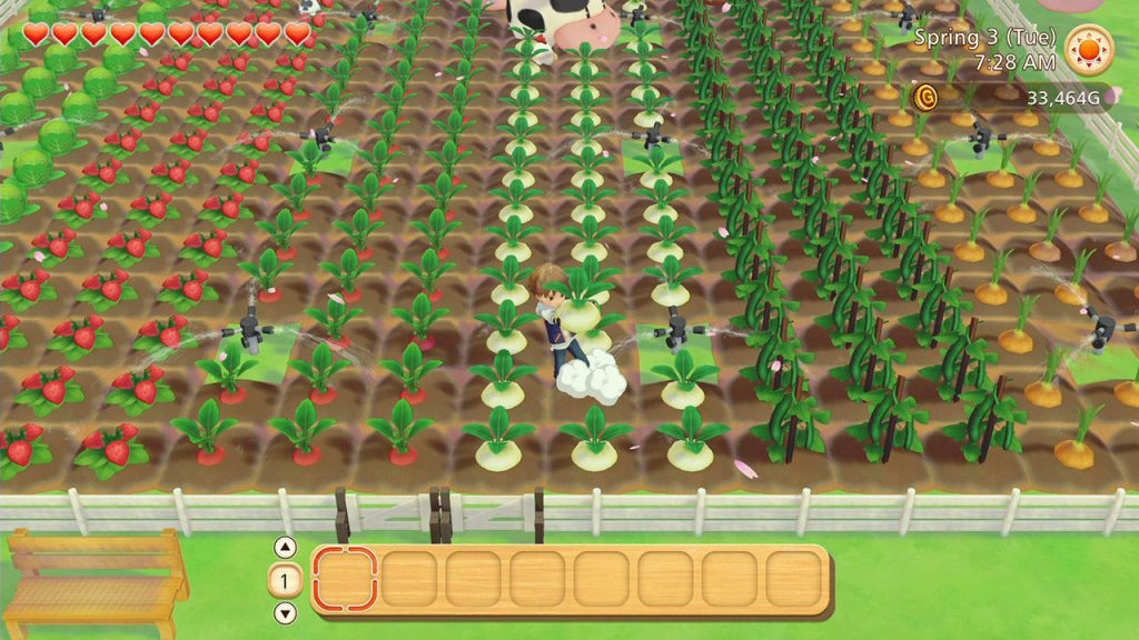 Switch STORY OF SEASONS Pioneers of Olive XCI NSP